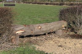 Replacement hedge line log